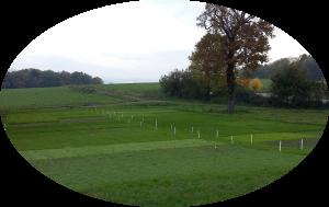 2015-10-27 Plateforme herbe Poisy pour journée herbe juin 2016