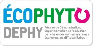 Dephy
